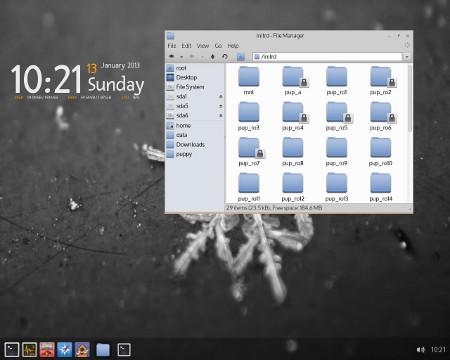ArchPup 13.2.1