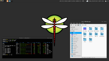 Dragonflybsd 4.2