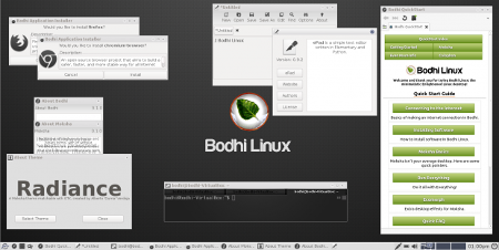 Bodhi Linux 3.1.0